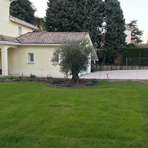 Bois, aménagement de jardin, Pool House & oliviers centenaires